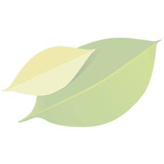 Kuchen im Glas PRÄSENT Schokolade, vegan