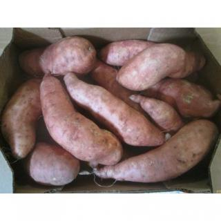 "Süßkartoffeln ""Batate"""