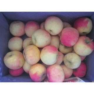 Apfel Dalinco