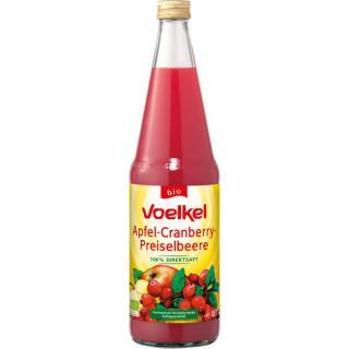 Apfel-Cranberry Saft  0,7Ltr