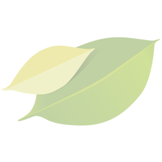 TK Die Guten Kartoffelklöße 500g ''bio mit Gesicht''