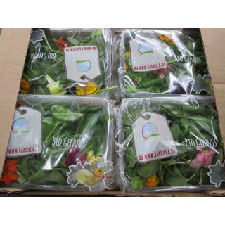 Mixsalat - mit essbaren Blüten  70 g-Schälchen