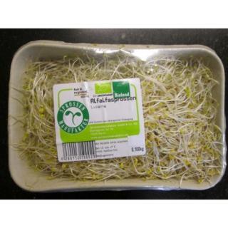 Alfalfa Sprossen 100g