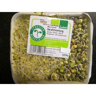 Salat-Mischung  Sprossen 100g