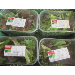 Regionaler Mixsalat  100 g-Schälchen