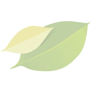 Camembert aus Bio Ziegenmilch  125g